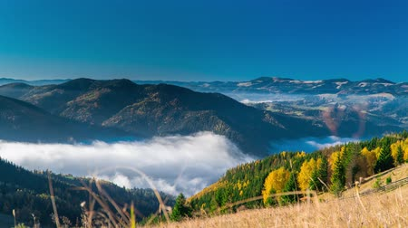 dumanlı sis : Time lapse. Clouds are moving in a mountain valley. Carpathian, Ukraine Europe