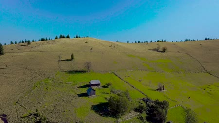manor : Aerial view of rural house and nature of the Carpathian mountains. Ukrainian national house is located on a beautiful grassy slope. 4K Stock Footage