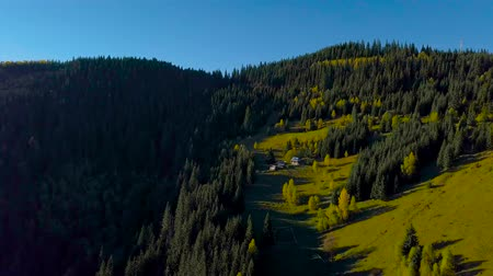 shepherds house : Aerial view of Carpathian Mountains in autumn. A small house of shepherds is located on the mountainside. Beautiful nature of the Carpathian region. 4K