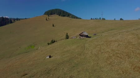 shepherds house : Flying over the pasture. Wooden house of shepherds is located on a beautiful grassy slope. Carpathian mountains. Ukraine. 4K Stock Footage
