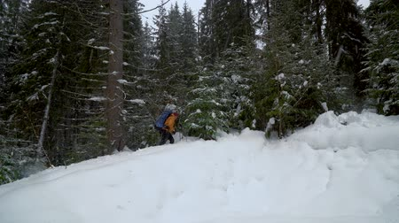 sklon : A man with a backpack climbs a snowy slope in the forest. It is difficult for a tourist to walk through snowdrifts. 4K Dostupné videozáznamy