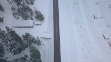 shepherds house : Aerial flight over winter forest and road. Cars go on the road. Aerial footage, 4K