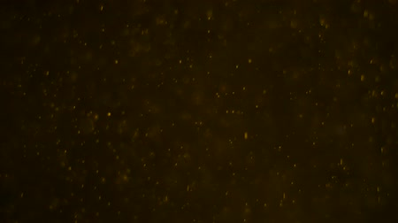 キラリと光る : Golden dust background. Golden particles dust. Glamor background 動画素材