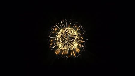 firecrackers : Colorful fireworks on black background. Set Of festive fireworks Stock Footage