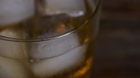 алкоголизм : Ice cubes melts in a glass of malt whiskey. Стоковые видеозаписи