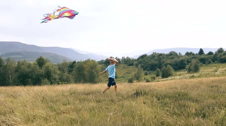 idaho : The boy runs and launches a snake in the mountains Kite Stock Footage