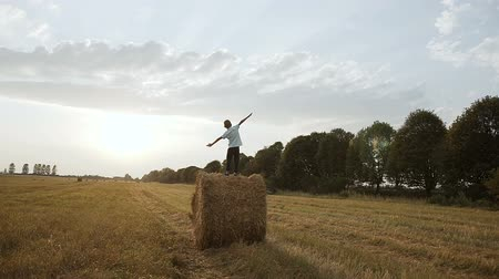 hay fields : In a field on a haystack there is a boy and looks at the sunset Stock Footage