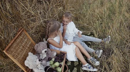 amoras : Two young children are playing in the field and eating fruit.Tips of straw in the field