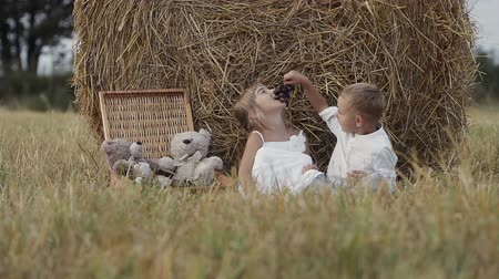 unir : Two happy children have fun in the field with bundles of straw and eat grapes. Sunset. Little boy and girl Stock Footage