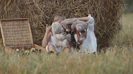 desenvolvimento : The boy and the girl are played by the toy bears. Happy children in the field. Sunset Vídeos