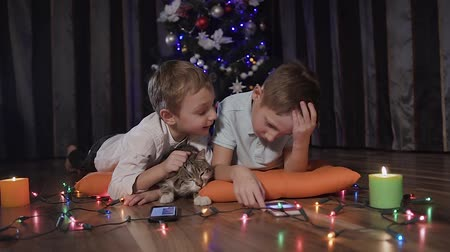 кошачий : Ride by the camera - two guys are lying on decorative orange pillows on the floor in the room near the Christmas tree along with their cat and playing online games on their phones