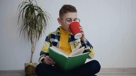 alfabetização : The nice little school boy in glasses reading funny a book while sitting on the floor in white indoor. The pupil read the funny book at home. The child read the interesting textbook Vídeos