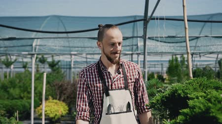 szállító : A smiling man is a gardener dressed in an apron with garden tools. Agricultural greenhouse with a lot of beautiful plants.