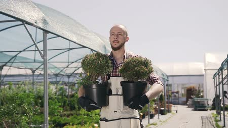 commercial cultivation : A beautiful gardener with a beard smiles and holds in the hands of ornamental plants. A young man uses garden tools to plant flowers. Stock Footage