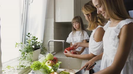 tomate cereja : Attractive happy mother and her younger daughter wash the vegetables together in the kitchen sink getting to cook mixing salad, the older sister slicing an apple. Mom gives her daughter tomatoes for cutting salad Stock Footage