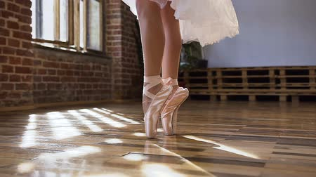 тапки : Close-up of ballerina graceful feet in ballet shoes dancing ballet elements on wood floor at ballet class. Dancing ballerinas feet in a dance-hall