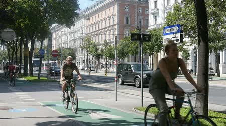 hofburg : Schottenring road in Vienna Stock Footage
