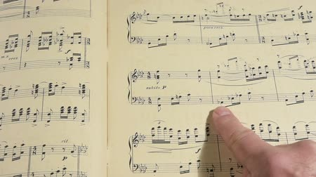 notation : A Musical scores