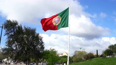 ensign : The portuguese flag waving