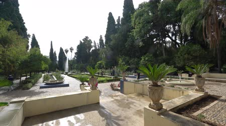 király : Fes, Morocco. November 9, 2019. panoramic view inside the Jnan sbil garden Stock mozgókép