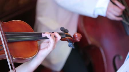cselló : Closeup of a woman playing the violin Stock mozgókép