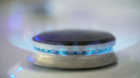 gas hob : Kitchen Gas Burner