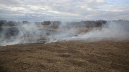 вереск : Aerial view of dry grass burning on the farmland