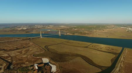 chloride : Aerial. Bridge on the River Guadiana on border with Spain.