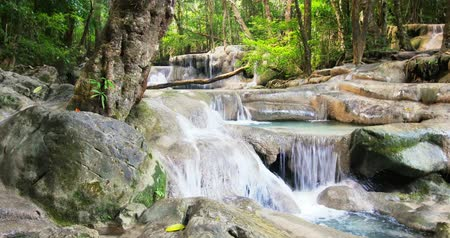 Канчанабури : Slider video footage of water stream cascades and small falls of mountain river flowing through evergreen forest in Thailand. Peaceful nature background Стоковые видеозаписи