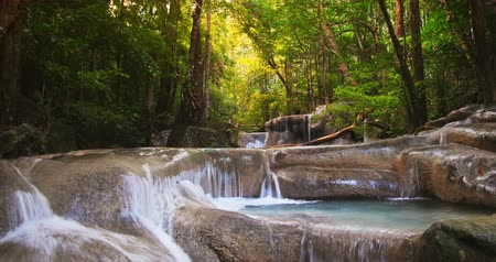 tájak : Beautiful water stream with cascades and small waterfalls flows through wild tropical rain forest full of green plants and trees with green leaves. Tracking slider video shot