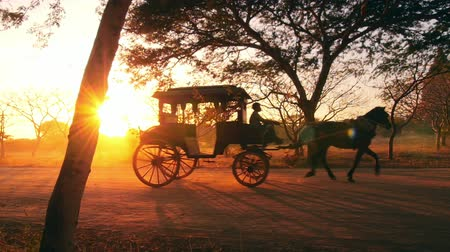 çekim : Retro transport in Burma, Bagan. Vintage horse wagon at sunset with shining sun and warm sun rays through trees and cart windows. Countryside of Myanmar