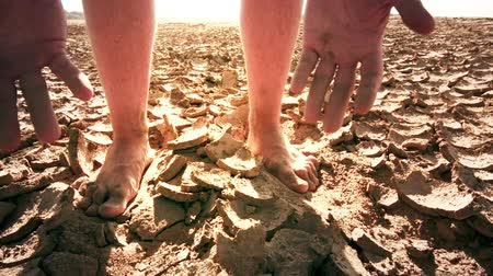 засуха : Conceptual scenic video of drought disaster because of global warming. Man cracks soil from dry ground Стоковые видеозаписи