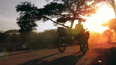 sáně : Warm sun rays and bright sun in rural Myanmar Burma. Two horse wagons in Bagan slow motion video Dostupné videozáznamy
