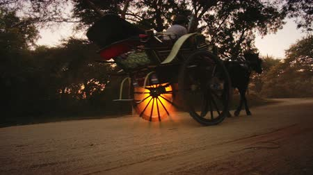 sáně : Beautiful silhouette of running horse pulling tourist cart at sunset by roads of Bagan, Myanmar Burma