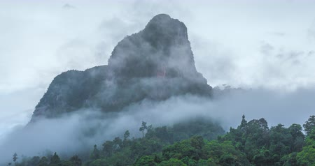 nevoeiro : Fog and mist clouds move fast around mountain in tropical forest. Thailand Phang Nga national park