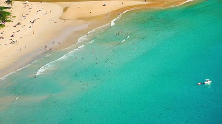 Aerial view of people relax and swim on summer vacation on tropical sandy beach 影像素材