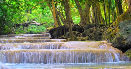 peaceful : Scenic nature of tropical forest. River with waterfalls flows through jungle Stock Footage