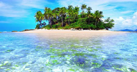 остров : Exotic tropical island with palm trees and white sand beach on clear water sea Стоковые видеозаписи