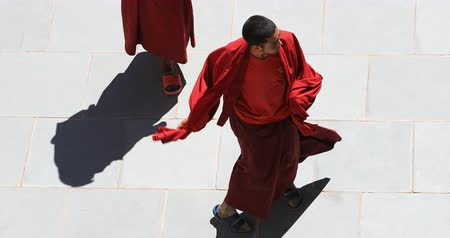 zelândia : Buddhist monk dances following tantric rythm of music in Ladakh monastery