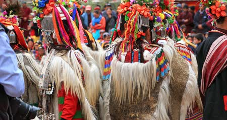 zelândia : Colorful traditional costumes and ethnic tribal clothes of people in Ladakh festival celebration, northern India Stock Footage