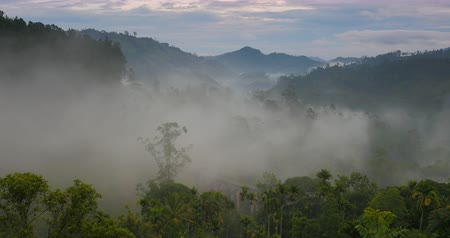 дымный : Nature timelapse of morning fog clouds move in mountain valley in Sri Lanka countyside mountains and hills