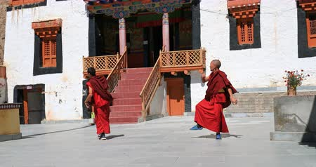 племенной : Monks of Likir monastery, Ladakh, India. Traditional and cultural performance near main temple Стоковые видеозаписи