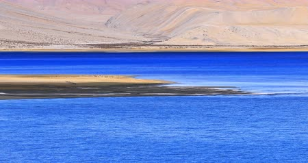 Tso Moriri lake in Ladakh India