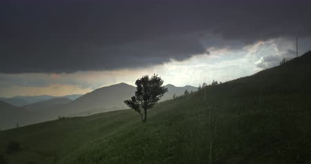 Beautiful heavy rain downpour in Carpathians mountains, dark stormy clouds over green meadow hill
