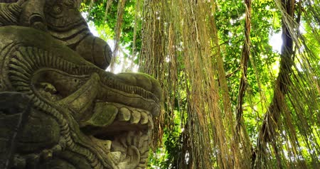 mitologia : Mystical forest with jungle plants and ancient Hindu statue of Dragon made of stone. Traveling to Bali, Indonesia
