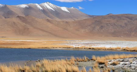 tibet : Tso Kar salt water lake in Rapshu, Ladakh, Jammu and Kashmir. Beautiful unique nature of indian north regions in Himalaya mountains highlands