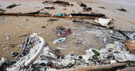 Contaminated water with debris and plastic waste floating on sea coast. Nature and ecology disaster background