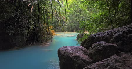 serenidade : Emerald pool in tropical paradise forest Vídeos
