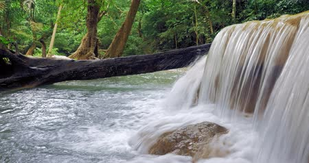 sedoso : Pure clean waterfall in tropical forest. Water stream flows through green jungle Vídeos