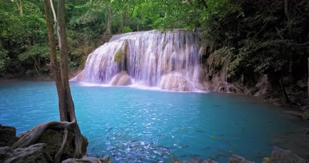 virgin forest : Waterfall in tropical forest. Beautiful pool with fish in natural paradise of Thailand rainforest jungle